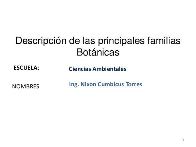 ESCUELA:NOMBRESDescripción de las principales familiasBotánicasCiencias AmbientalesIng. Nixon Cumbicus Torres1