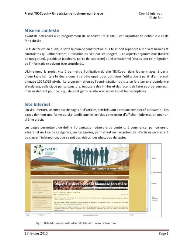 Projet TIC-Coach – Un assistant-entraîneur numérique                               Comité Internet                        ...