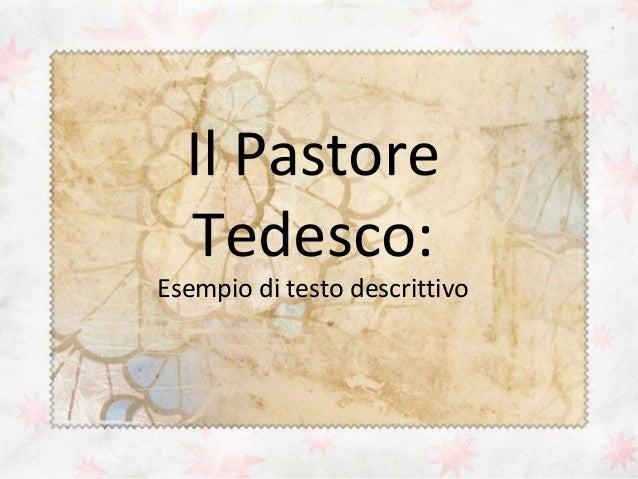 Il Pastore Tedesco:  Esempio di testo descrittivo