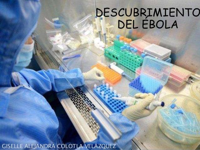 DESCUBRIMIENTO  DEL ÉBOLA  GISELLE ALEJANDRA COLOTLA VELÁZQUEZ