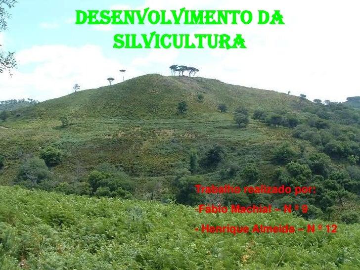 Desenvolvimento da Silvicultura<br />Trabalho realizado por:<br /><ul><li>Fábio Machial – N º 9</li></ul>- Henrique Almeid...