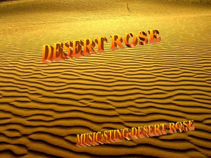 DESERT ROSE MUSIC:STING-DESERT ROSE
