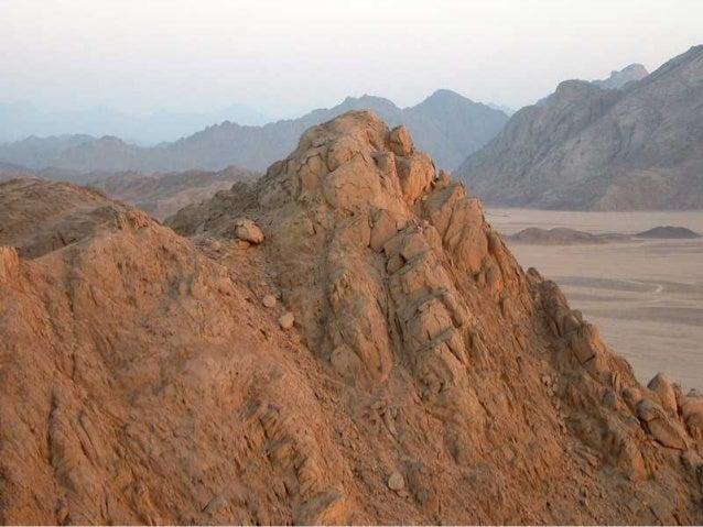 The Egyptian Desert