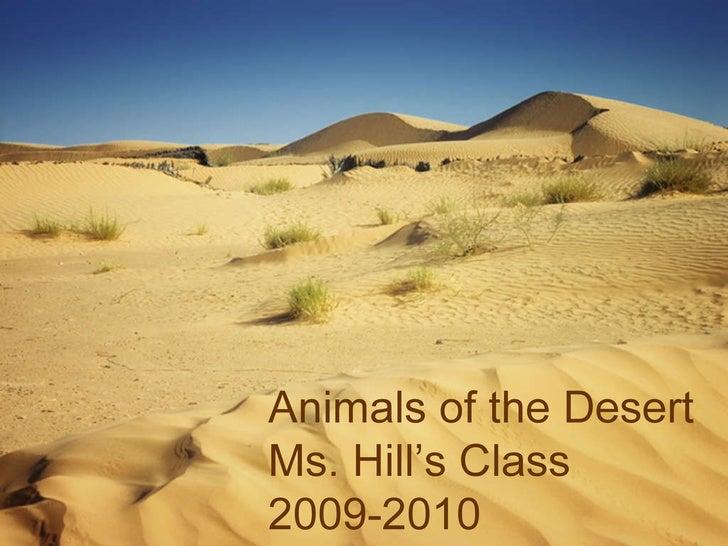 Desert Animals-Hill
