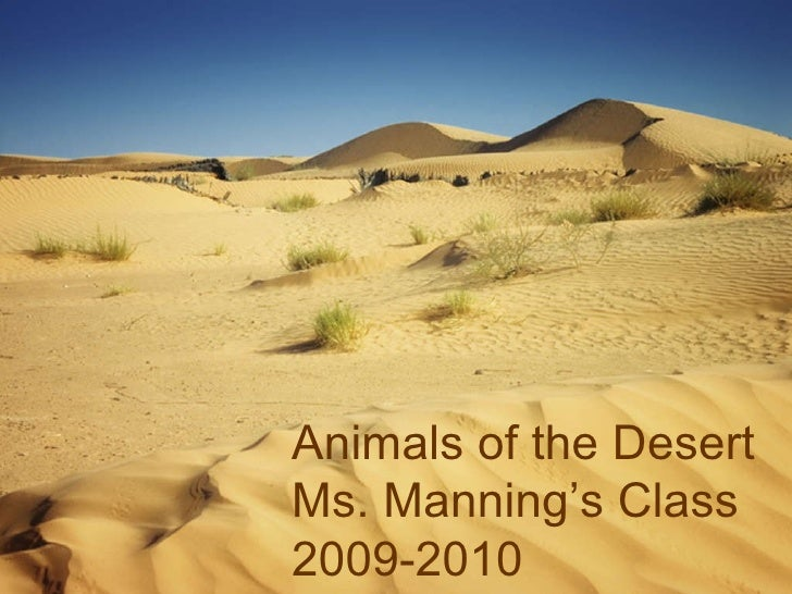 Animals of the Desert Ms. Manning's Class 2009-2010