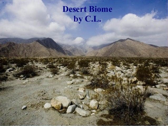 Desert Biome by C.L.