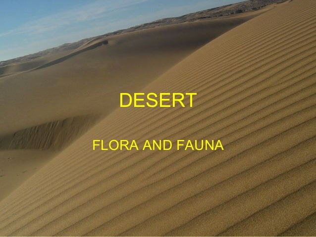 DESERT FLORA AND FAUNA