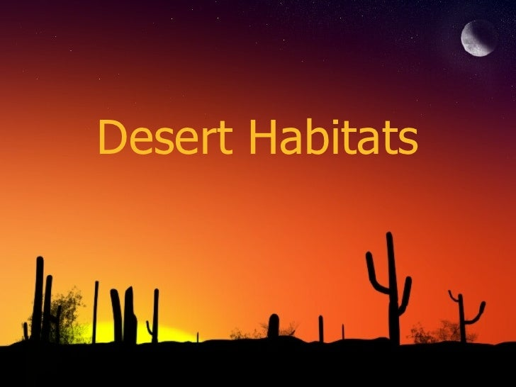 what is desert habitat How to create a habitat for a desert tortoise there are a wide variety of desert tortoises that are suitable as pets they make great pets because tortoises can make great pets, but before you take on a tortoise as a petyou have you have to have the proper habitat for it most tortoises are kept in an.