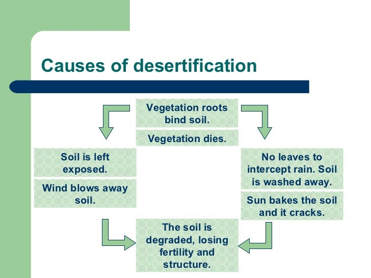 an explanation of desertification Potential evapotranspiration supplements the measurement of precipitation in providing a scientific measurement-based definition of a desert.