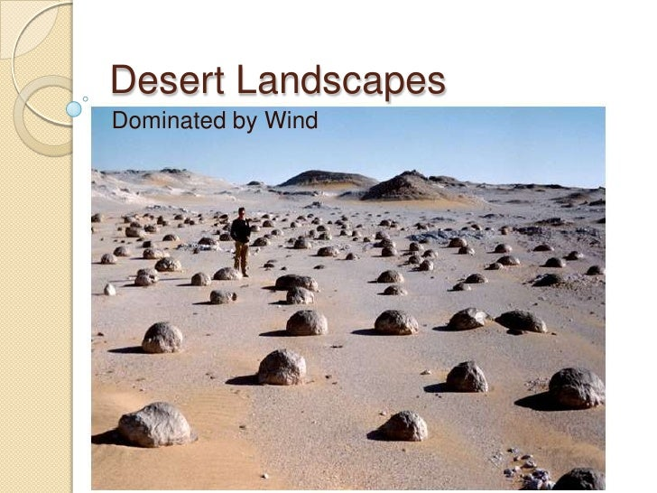Desert LandscapesDominated by Wind