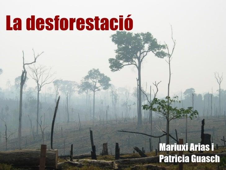 La desforestació                   Mariuxi Arias i                   Patricia Guasch