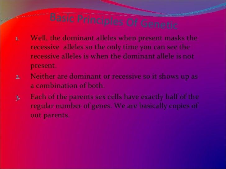 argumentative essay on human cloning