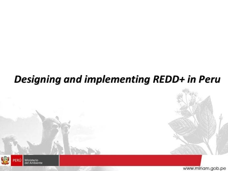 Designing and implementing REDD+ in Peru