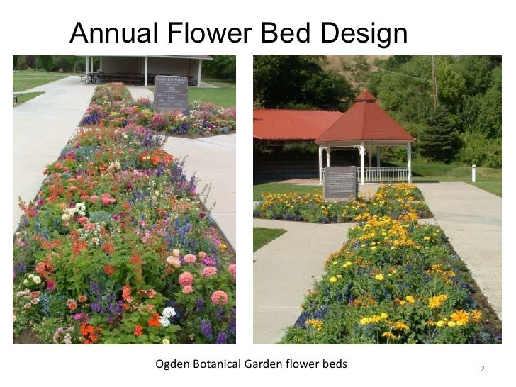 Designing annual flower bed 6 19 2010 for Annual garden designs