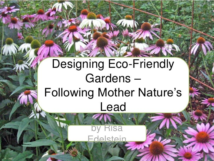 Designing Gardens with Native Plants