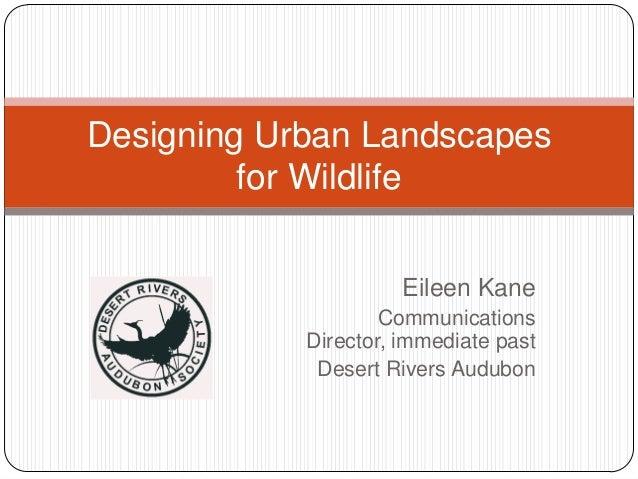 Eileen KaneCommunicationsDirector, immediate pastDesert Rivers AudubonDesigning Urban Landscapesfor Wildlife