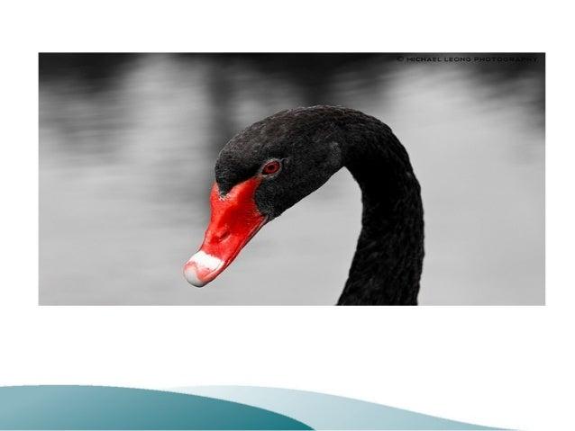 Design ProjectsDesign ProjectsIntroduction to Risk ManagementIntroduction to Risk ManagementAtula Abeysekera MSc, DIC, CEn...