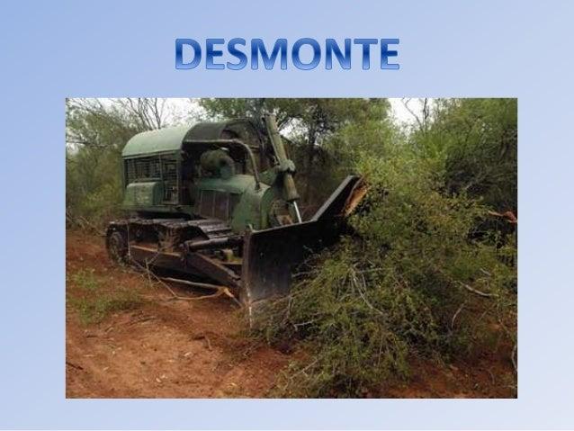 1. Desmonte. 1.1 Definición. En esta especificación se entiende por desmonte el retiro de la vegetación en el derecho de v...
