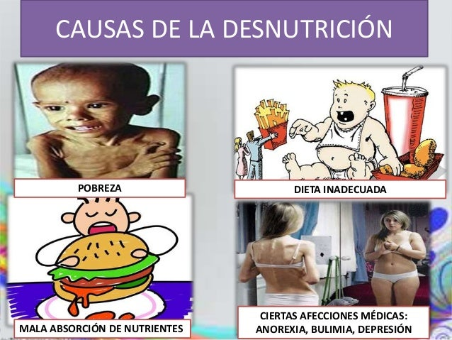 Anorexia causas y consecuencias yahoo dating 2