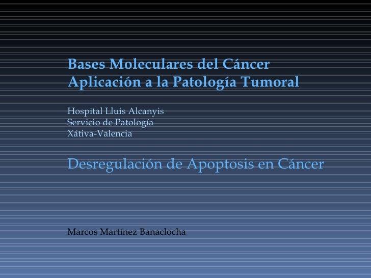 Bases Moleculares del Cáncer Aplicación a la Patología Tumoral Hospital Lluis Alcanyis Servicio de Patología Xátiva-Valenc...