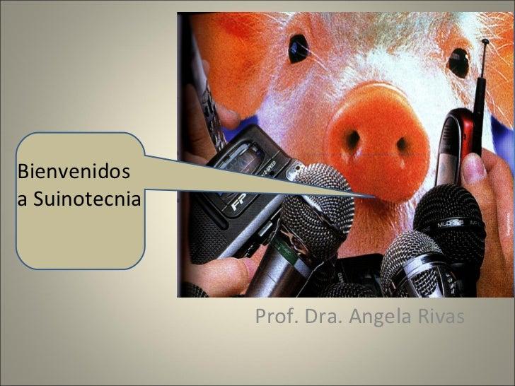 Prof. Dra. Angela Rivas  Bienvenidos a Suinotecnia
