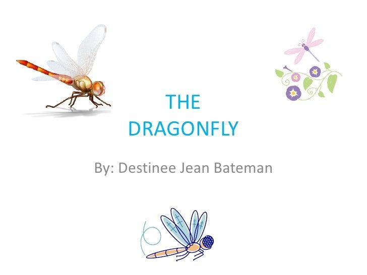 THE    DRAGONFLYBy: Destinee Jean Bateman