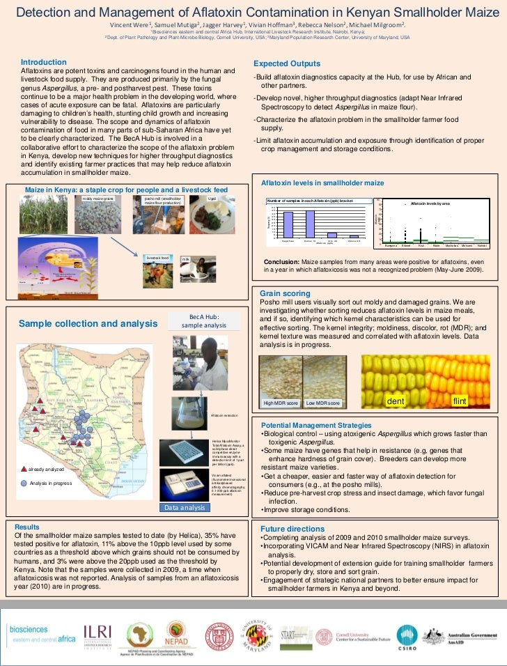 Detection and management of aflatoxin contamination in Kenyan smallholder maize