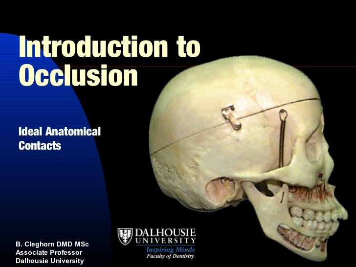 Introduction toOcclusionIdeal AnatomicalContactsB. Cleghorn DMD MScAssociate ProfessorDalhousie University