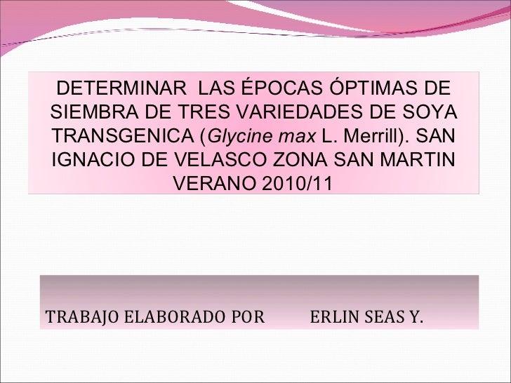 TRABAJO ELABORADO POR  ERLIN SEAS Y.  DETERMINAR  LAS ÉPOCAS ÓPTIMAS DE SIEMBRA DE TRES VARIEDADES DE SOYA TRANSGENICA ( G...