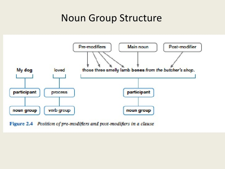 Noun Groups Examples images
