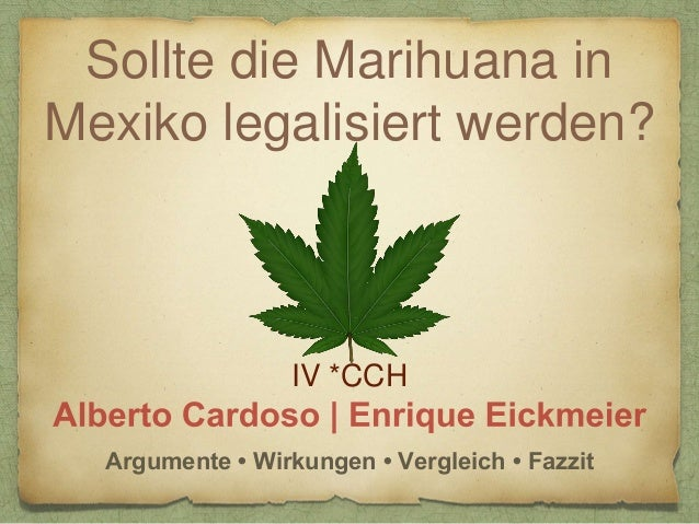 Sollte die Marihuana in Mexiko legalisiert werden? IV *CCH Argumente • Wirkungen • Vergleich • Fazzit