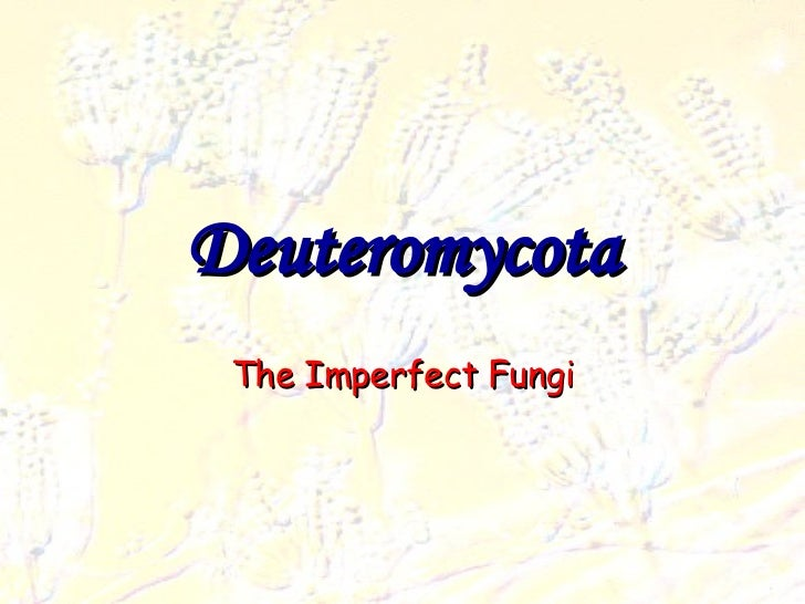 Deuteromycota The Imperfect Fungi