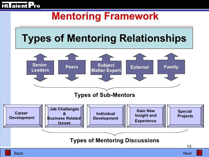 establish a mentoring relationship manager