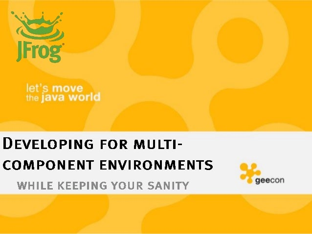 Developing for multi component environments while keeping your sanity
