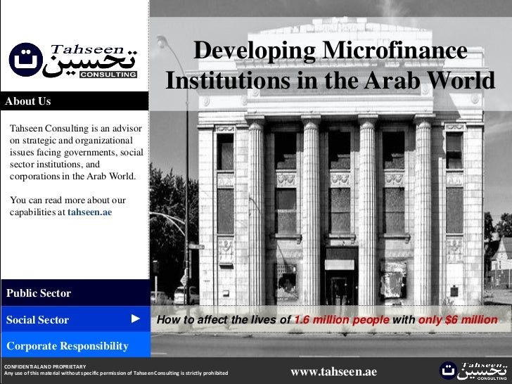 Developing Microfinance Institutions in the Arab World