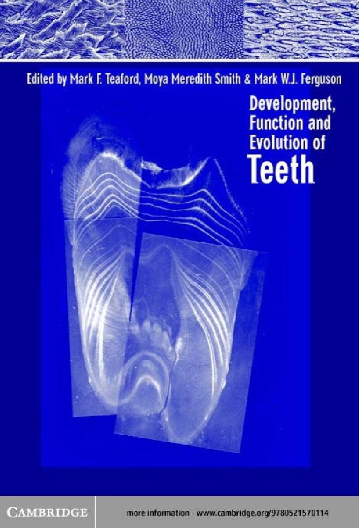 Development, function and evolution of teeth   mf teaford, mm smith, mwj ferguson