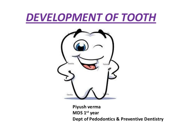 DEVELOPMENT OF TOOTH       Piyush verma       MDS 1st year       Dept of Pedodontics & Preventive Dentistry