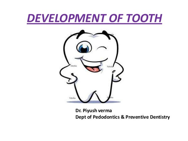 DEVELOPMENT OF TOOTH  Dr. Piyush verma Dept of Pedodontics & Preventive Dentistry