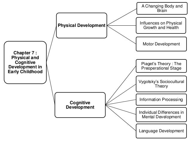 Cognitive Development Theories
