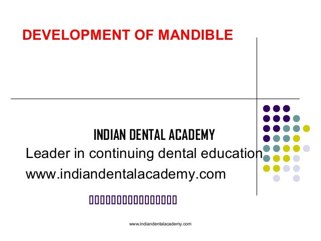 Development of mandible /certified fixed orthodontic courses by Indian dental academy