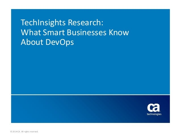 TechInsights Research: What Smart Businesses Know About DevOps