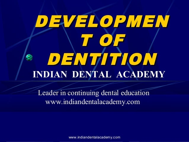 DEVELOPMEN T OF DENTITION  INDIAN DENTAL ACADEMY Leader in continuing dental education www.indiandentalacademy.com  www.in...