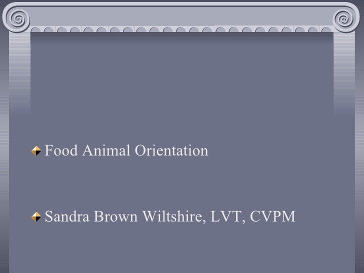 <ul><li>Food Animal Orientation </li></ul><ul><li>Sandra Brown Wiltshire, LVT, CVPM </li></ul>