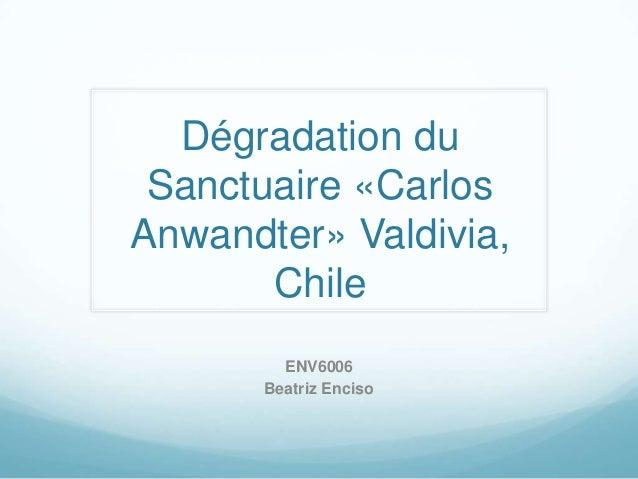 Dégradation du Sanctuaire «CarlosAnwandter» Valdivia,       Chile         ENV6006       Beatriz Enciso