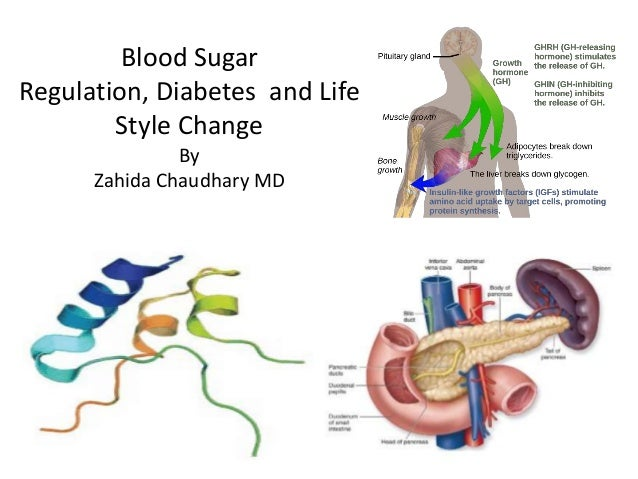 Blood Sugar Regulation, Diabetes and Life Style Change By Zahida Chaudhary MD