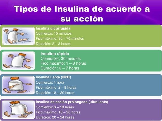 tipos de insulina de acuerdo a su acción insulina ultrarrápida
