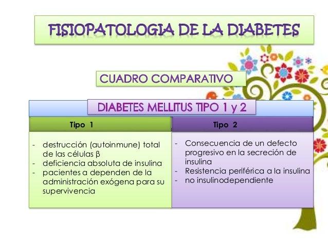 Diabetes mellitus tipo 2 (1)