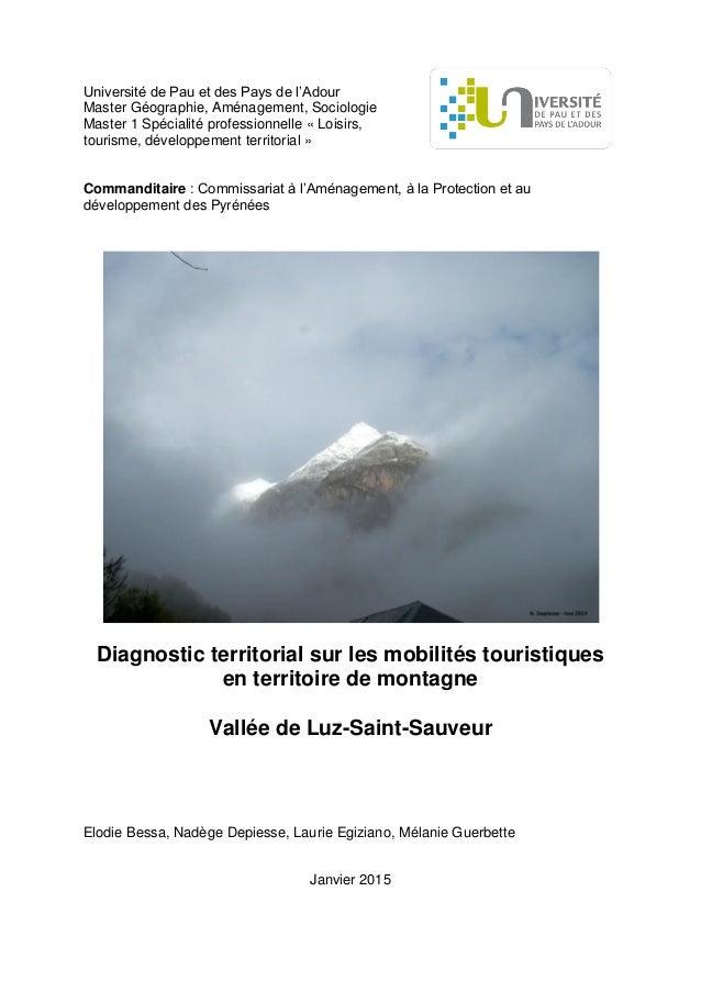Université de Pau et des Pays de l'Adour Master Géographie, Aménagement, Sociologie Master 1 Spécialité professionnelle « ...