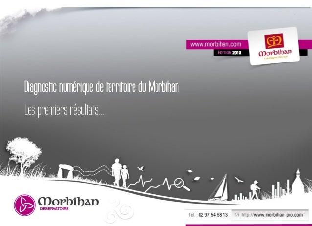 2013Diagnostic numérique de territoire du MorbihanLes premiers résultats...                                               ...