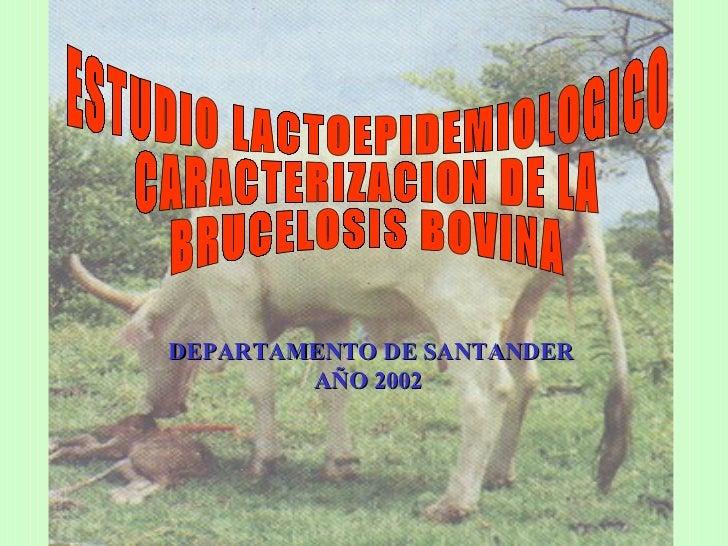 ESTUDIO LACTOEPIDEMIOLOGICO CARACTERIZACION DE LA  BRUCELOSIS BOVINA DEPARTAMENTO DE SANTANDER AÑO 2002